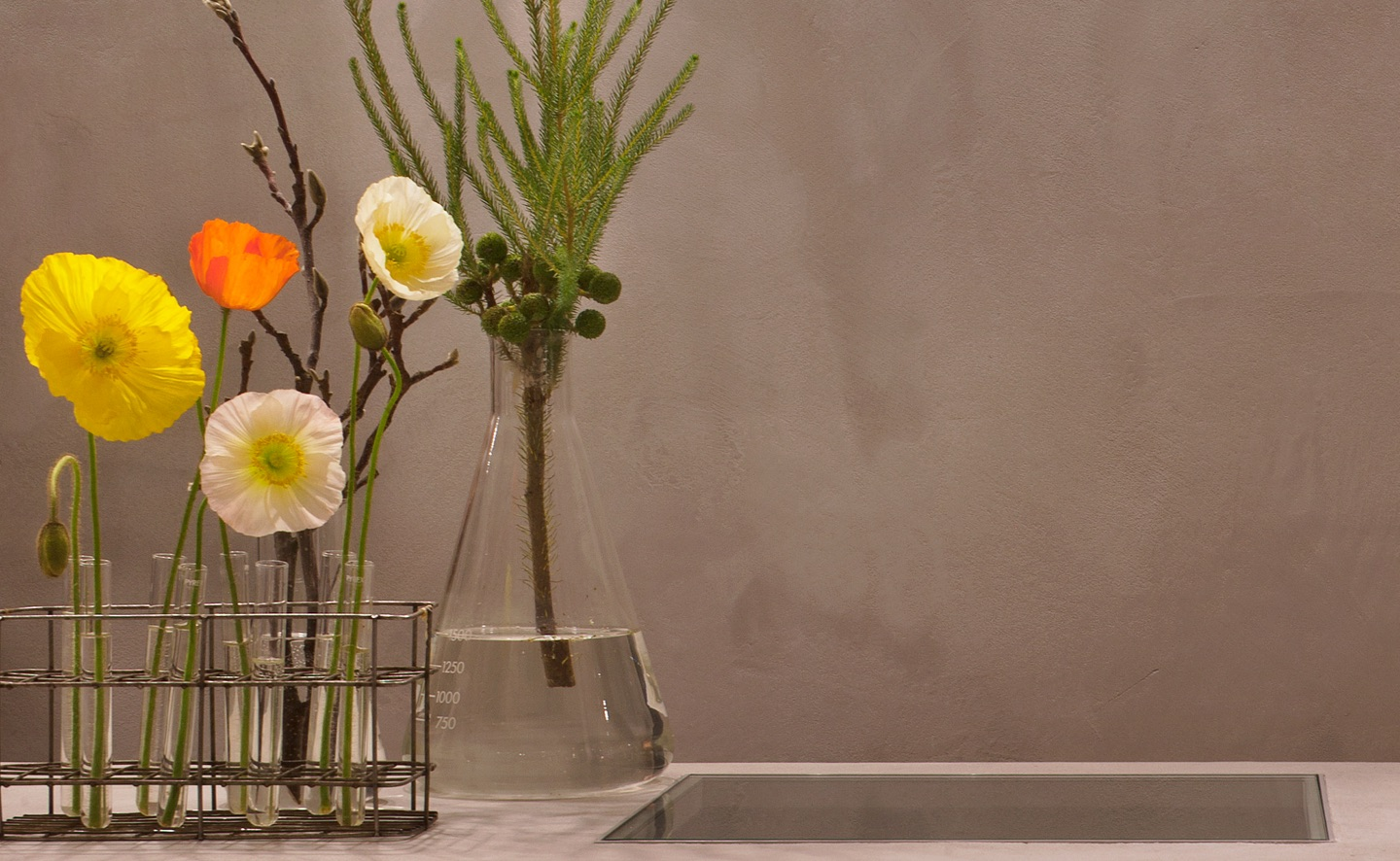 cremorne velvet wall finish with flowers and water vase